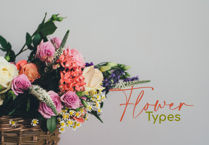 Our Florist has the finest and freshest blooms from our direct sources. No doubt will you be blown away by our good quality flower bouquets. Our blooms are well-arranged by our passionate floral designers and will warm the hearts of the recipients.