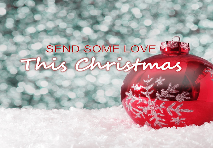 Sending one of our Christmas floral arrangements is the best way to let someone know that you're thinking of them this holiday season. We offer a wide array of options. You can send a Christmas bouquet or a plant. With such a wide selection, you can find the Christmas flowers that you know will be appreciated by your family.