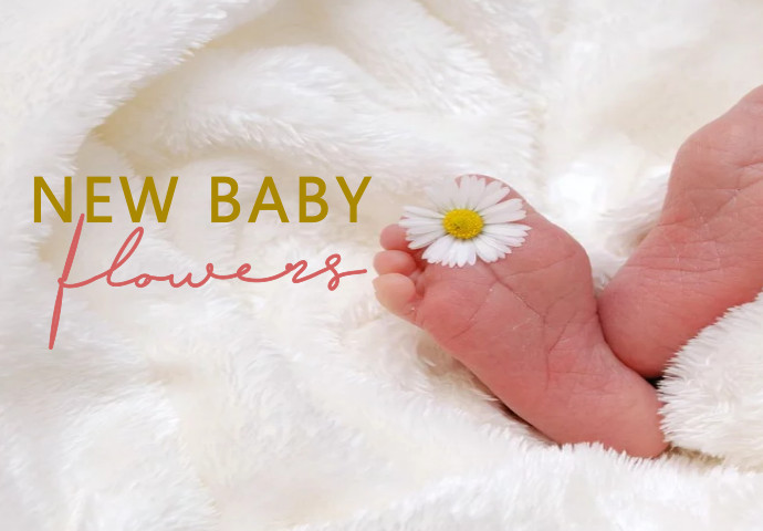 Welcome a new baby with a beautiful flower bouquet that everyone can enjoy. At such a special time, let the proud new parents know you are thinking of them by giving a bunch of fresh flowers. Have a scroll and let us know when you have found your perfect fit.