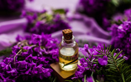 Lavender Essential Oil Banner