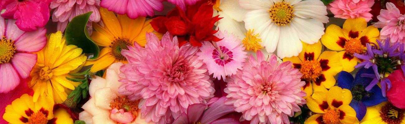 The art of flower arrangements