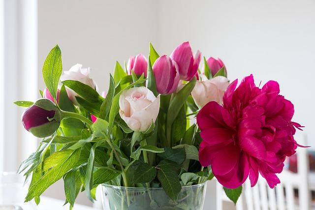 Peonies Popular Flower in UK Banner