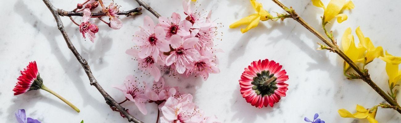 Florist Industry in Uk Banner