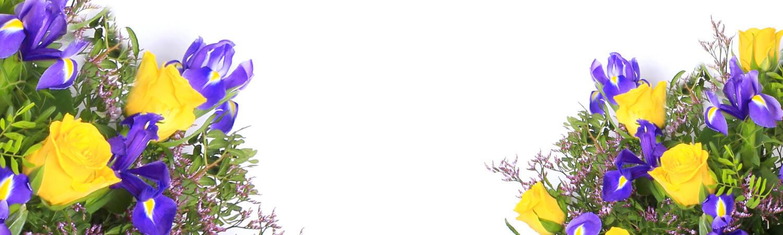 https://cdn.floristblooms.com/sites/244/content-location/92b0640f-da7d-498b-958c-1d36327c7e81.jpg