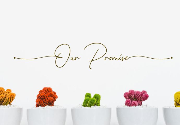 We promise logo