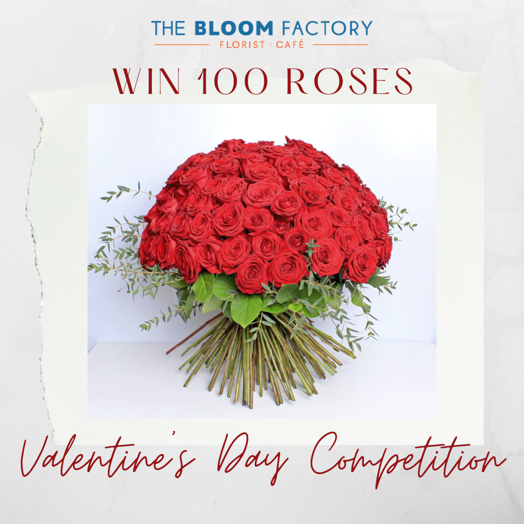 red roses competition banner